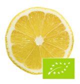 limon-interior-eco2